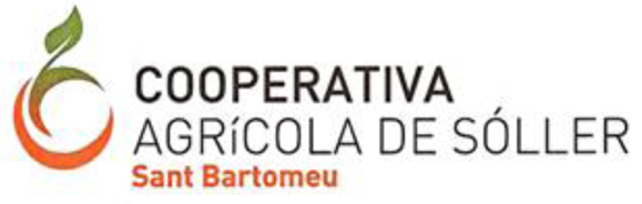 COOPERATIVA SANT BARTOMEU (OLIS SOLLER) - Balearic Islands - Agrifoodstuffs, designations of origin and Balearic gastronomy
